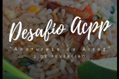 "Desafio ACPP – ""a Natureza do Arroz"""